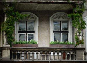dostojnosc-zieleni_j_tomczykjpg